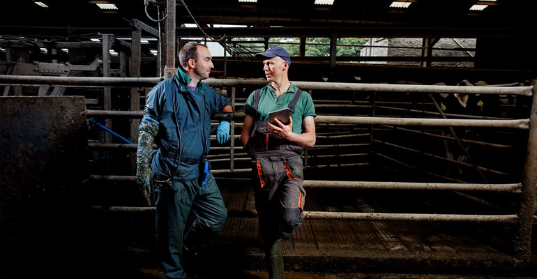 Easi-Scan:Go wireless bovine ultrasound